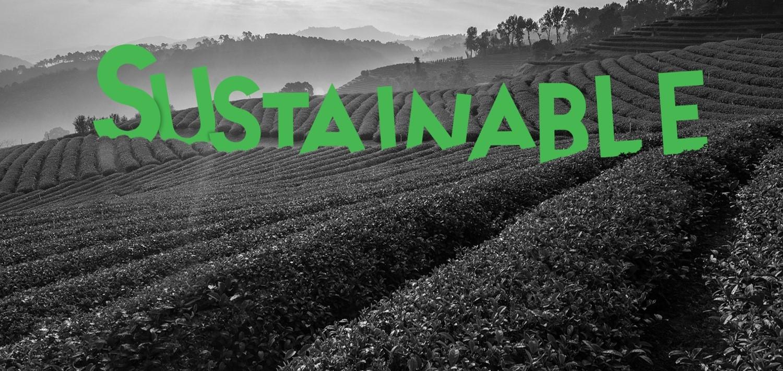 Zielony napis na tle pola uprawnego